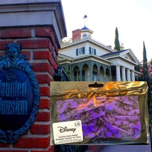Disney the haunted Mansion face 😈 mask
